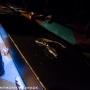 backtrack-pyramidscheme-grandrapids_mi-20140221-anthonynowack-010