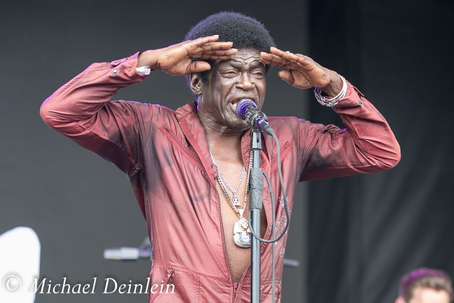 Forecastle Festival (Charles Bradley and His Extraordinaires) at the Waterfront In Louisville, KY | Photo by Michael Deinlein