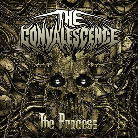 Header-TheProcess-TheConvalescence-AlbumArt