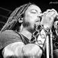 Sevendust-StarlandBallroom_NJ-20140608-JeffCrespi-017