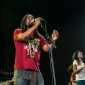 Wailers-FreedomHill-SterlingHeights_MI-20140706-SamiLipp-005