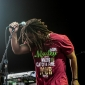 Wailers-FreedomHill-SterlingHeights_MI-20140706-SamiLipp-014