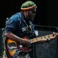 Wailers-FreedomHill-SterlingHeights_MI-20140706-SamiLipp-018