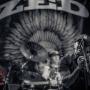 zed-phoenixtheater-petaluma_ca-20131213-011
